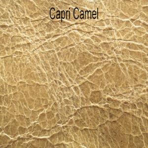 Capri-Camel_314