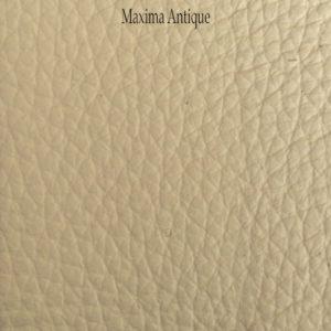 Maxima-Antique_346